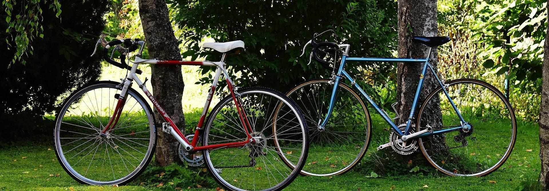 7a1a25a48775 Érd-M.S.N. – Kerékpár szaküzlet és szervíz